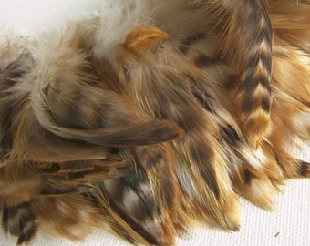 Red Chinchilla Rooster Feathers Top Stitched, 3 INCH Strip