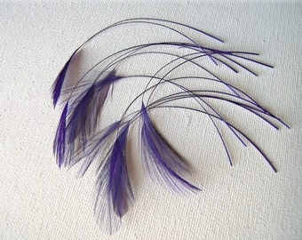 "Purple Stripped Rooster ""Eyelash"" Feathers, 15 Pcs"