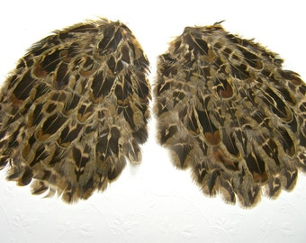 Pheasant Feather Pads, 2 Pads