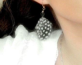 Black and White Polka Dot Feather Earrings, Natural Guinea Feathers
