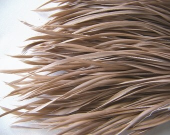 TAUPE Biot Sword Feathers, 25 Pcs