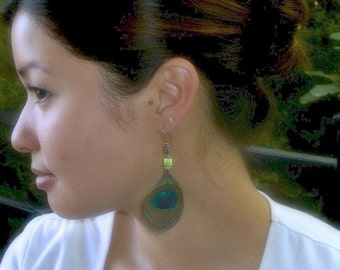 Peacock Feather Earrings, Trimmed