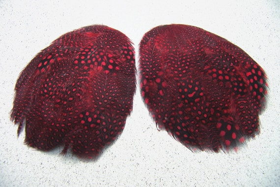 2 RED Guinea Feather Pads, Black with Red Polka Dots, Red Guinea Feathers