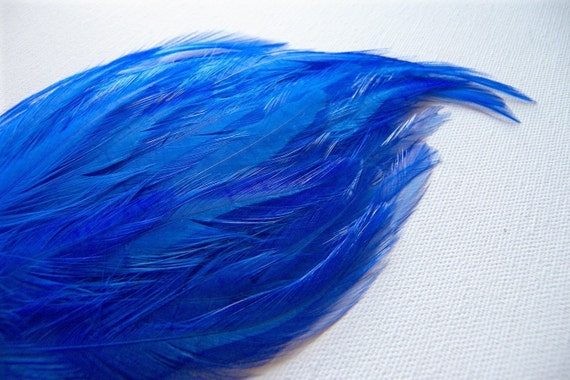 ROYAL BLUE Feather Pad, 1 Pad