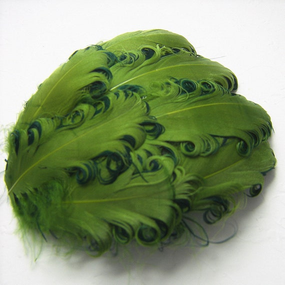Curly Feather Pad, Sage on Emerald Green, 1 Nagorie Pad