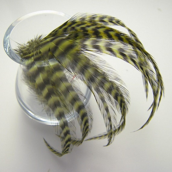 10 Sage Green Grizzly Feathers, 4 to 6 Inches Long