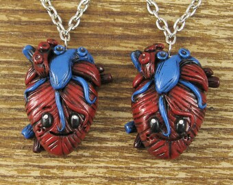 Anatomical Heart - Best Friends Necklace Set