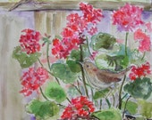 Geraniums and Housewrens so Happy Together
