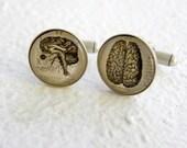 Brain Cufflinks - Anatomical Brain - Vintage Anatomy Cufflink Set  - Great for Neurologist - Great gift Doctor or Medical School Graduate