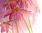 Echinacea in Pink, Cone flower,  original watercolor painting. floral, Jean Levert Hood