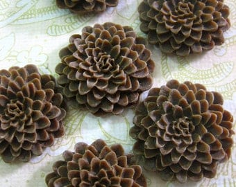 chocolate brown chrysanthemum cabochon, 25mm mum, big resin flowers