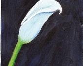 Calla - original painting (acrylic) 5x7 inches