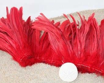 Rooster coque feathers 8-10 inch length color red- dyed over natural bleached