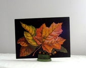 Bright Harvest Leaves with Black Background Vintage Paper Ephemera