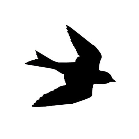 Aninimal Book: CLEARANCE Silhouette Swallow in Flight Rubber Stamp Large Bird