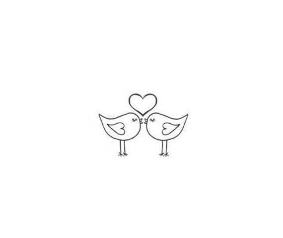 Cute Love Bird Pictures Cute Love Birds Kissing