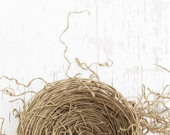 Fall Decor Bird Nest Home Decor Art Sculpture