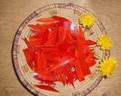 Translucent Red Stained Glass Shards for Mosaic Art Crafting
