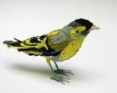 Fabric species bird- SISKIN