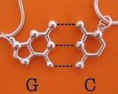 friendship necklace set - DNA and RNA base pairs