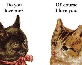 Do You Love Me Cats Magnet - Humor - Gift - Stocking Stuffer - Kitten