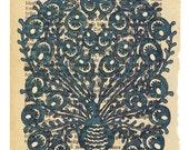 Peacock -Print