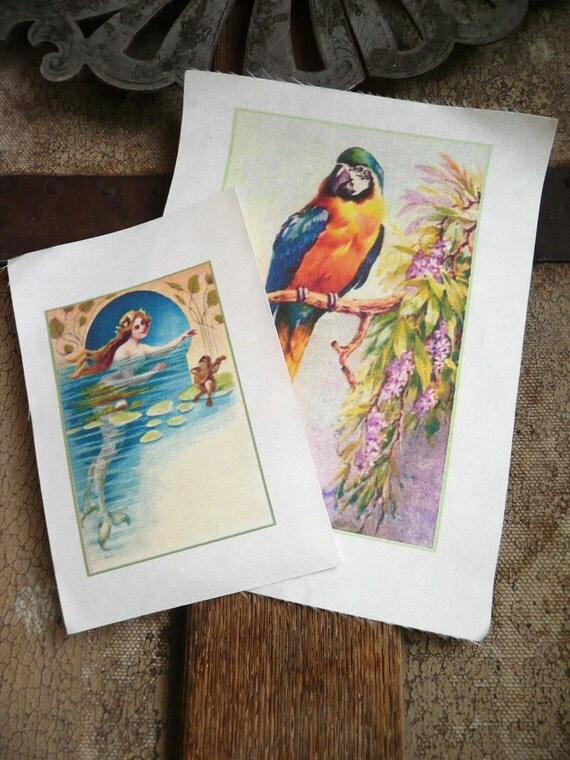 SALE - 2 Printed Silk Appliques - parrot and mermaid