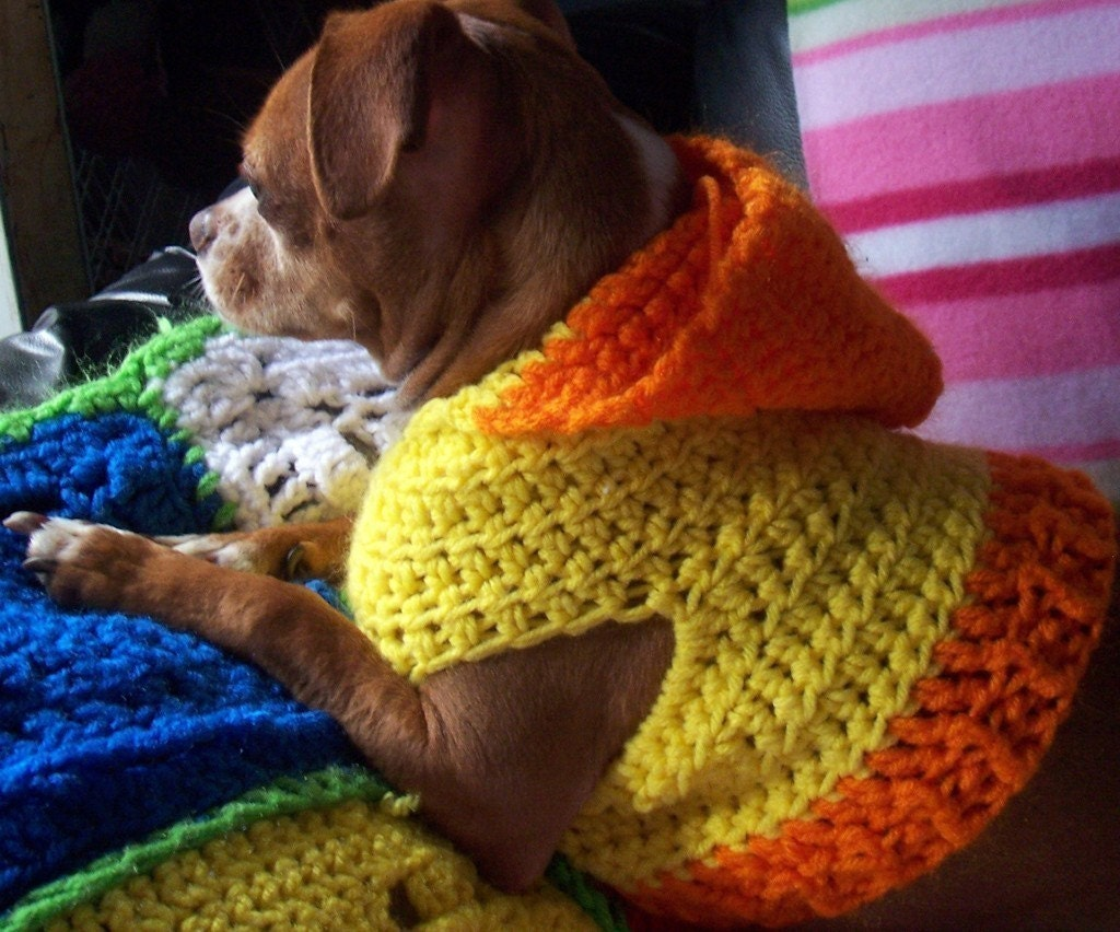 Crocheted Hooded Dog Sweater Pattern Pdf Small And Medium