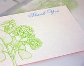 Customized Thank You Hydrangeas Note Cards Gocco Screen Printed for katemcLeod