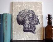 HALLOWEEN Canvas Art Prints - Vintage Anatomical Drawing