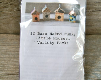 Bare Naked VARIETY House Birdhouse Kit - Makes 12 House Pendants - Do It Yourself DIY - Art By Heather