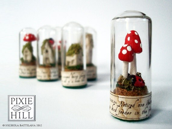 Fairy Specimen Under Glass - No.010.12 - with Red Spotted Toadstools and Ladybug