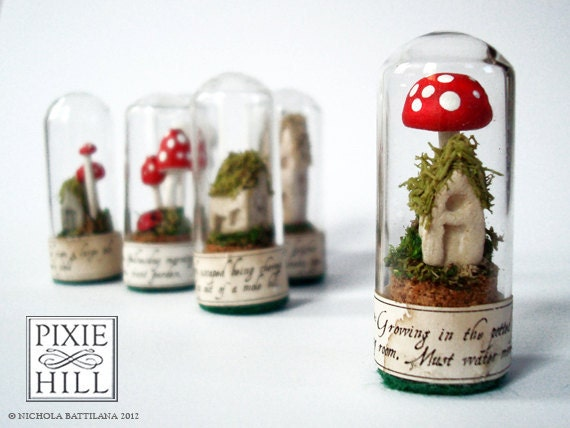 Fairy Specimen Under Glass - No.021.12 - with Red Spotted Toadstool with a Mossy Faerie Cottage