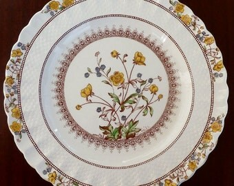 Vintage Spode Buttercup Dinner Plate