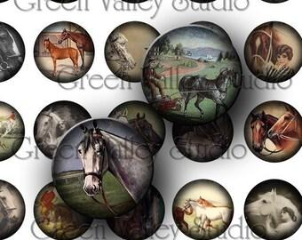 INSTANT DOWNLOAD Digital Art Images Collage Sheet Equine Horses Vintage Illustrations One Inch Circles for Pendants Magnets Scrapbook (C21)