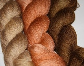 Cinnamon Spice  Color Spell Collection