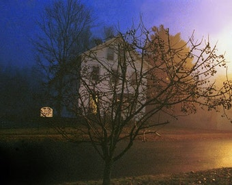 Tree House - ACEO