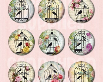 15 Bird in the birdcase Flat back Buttons or Pinback Buttons