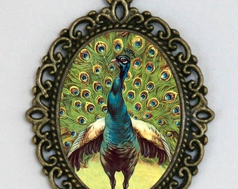 Peacock necklace peacock feathers vintage art birds feathers victorian DIY