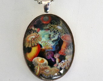 Sea anemone NECKLACE sea creatures ocean underwater fantasy large 40x30mm glass domed pendant