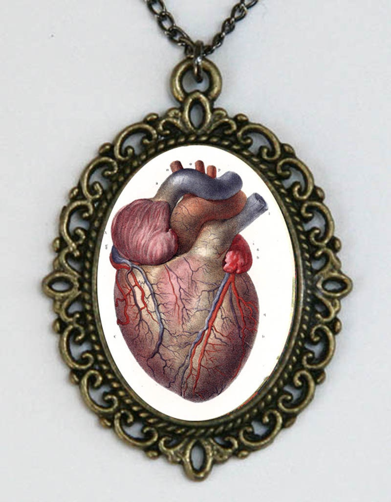 Anatomical Heart vintage Victorian Medical Drawing necklace