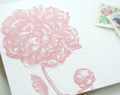 Peony letterpress  flat notes - set of 5