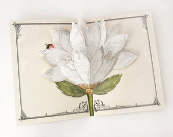 Flower Greeting Card - White Lace Flower. Blooms open. Lovely gift for mother, grandmother, wedding, thinking of you. Memorable pop up art