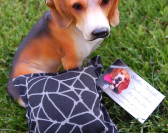 Spin me a web, black with gray spiderwebs squeaker square dog toy