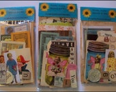 FuNKY JuNKY Altered Art Kit - SELLER'S CHOICE