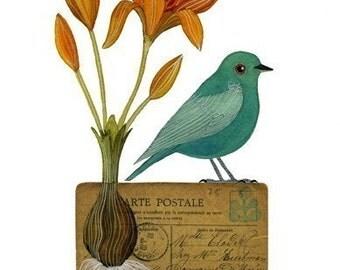 Bird No.11