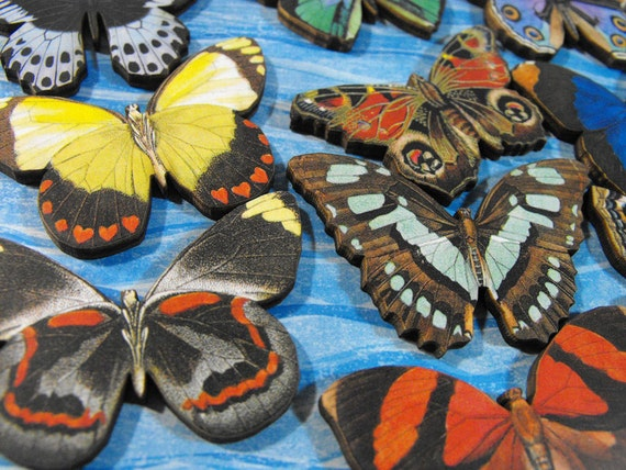 Wood Medium Sized Butterflies