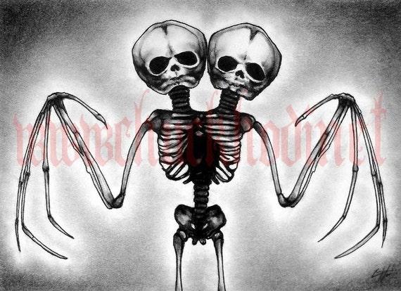 Bat wing skeleton - photo#40