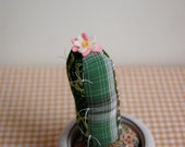 Mini Stuffed Cactus