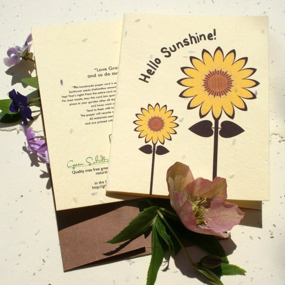 Plantable greeting card - grows sunflowers when recycled - plant sunshine in a card